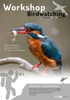 Poster_birdwatching_web_1_725_999