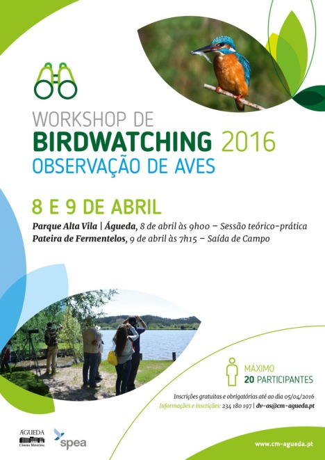 wks_birdwatching2016-1