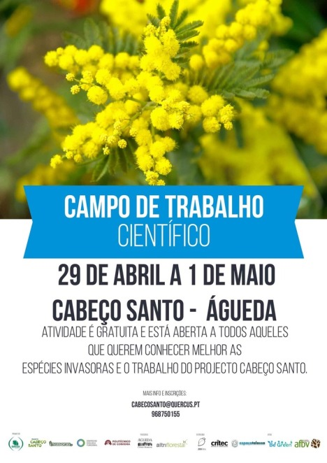 CabecoSantoInvasorasCartaz_1_725_999