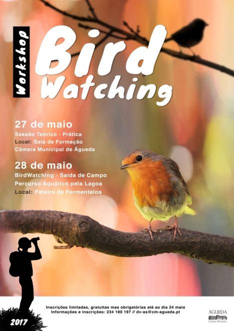 4-Birdwatching_2017_A3_v2_1_725_999