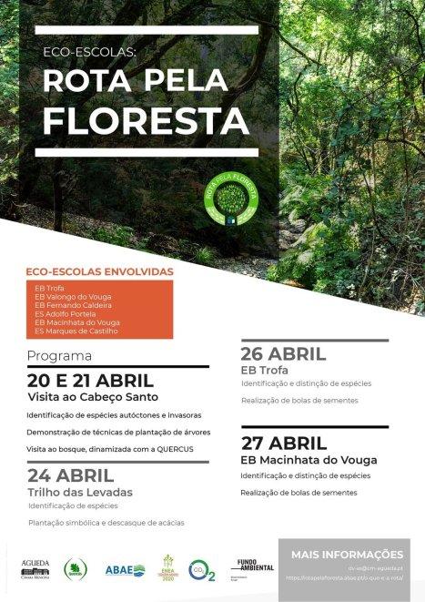 rota_floresta_v2_1_1024_2500